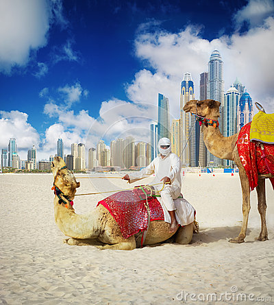 Free Camel On Dubai Beach Royalty Free Stock Photos - 26162608