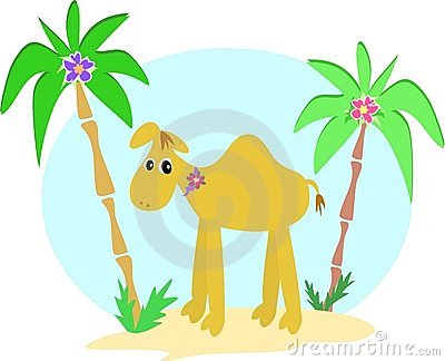 Camel and Palm Trees