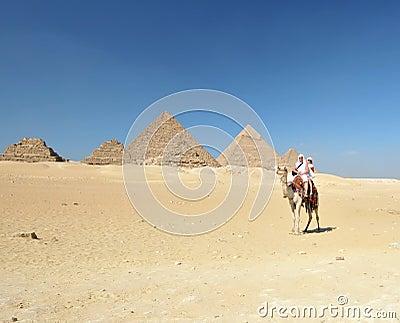 Camel ride by Giza pyramids