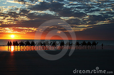 Camel Ride Sunset Cable Beach
