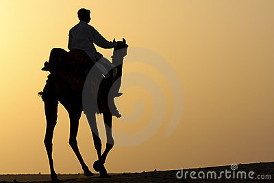 Camel rider silhouette