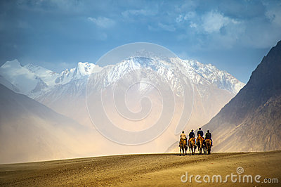 Camel riding at desert of Nubra Valley Editorial Photography