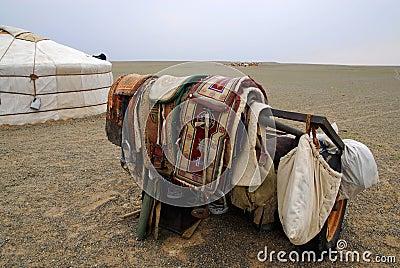 Camel saddles, Mongolia