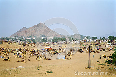 Camel Fair, Pushkar India