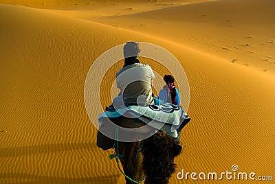 Camel trekking ,Morocco