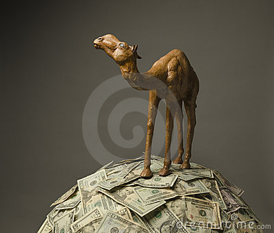 Camel on US currency