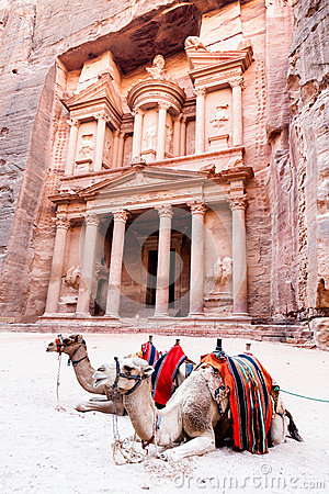 Free Camels Of Petra Royalty Free Stock Photography - 31180287