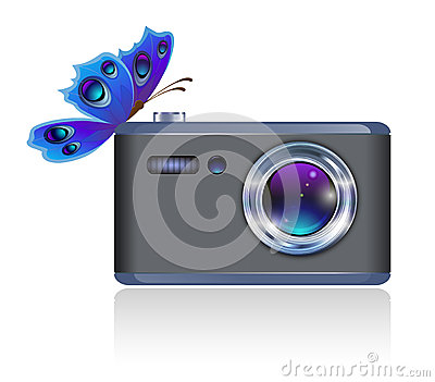 Camera and butterfly.