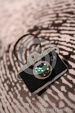 Camera on a fingerprint