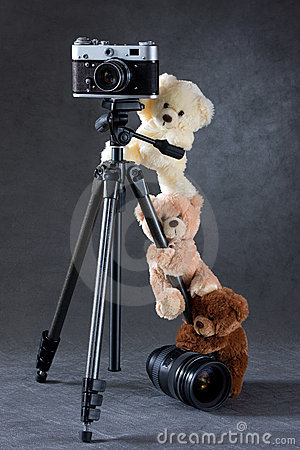 Camera and group of teddy bears isolated