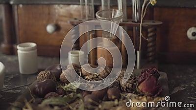 Camera omhoog bewegen met gedroogde bloemen, moeren en proefbuizen met retro-stijl Verouderde chemische ingrediënten die op de stock video
