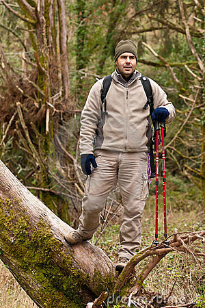 Caminante después de clibing un árbol