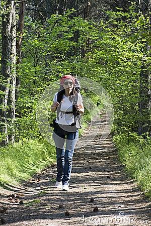 Caminante en bosque
