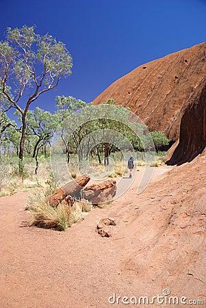 Caminata de la base de Uluru (roca de Ayers) Foto de archivo editorial