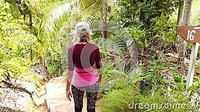 Caminhada da palmeira de Coco de Mer filme