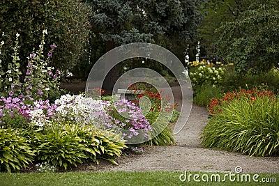 Camino del jardín