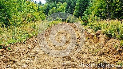 Camino erosionado