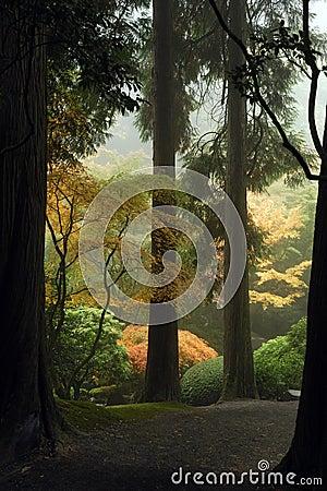 Camino japonés del jardín