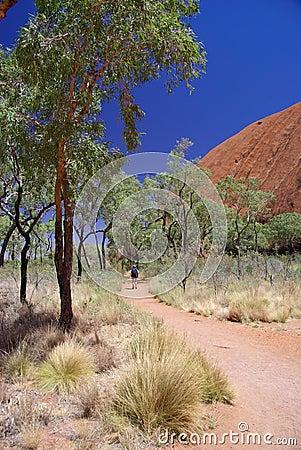 Camino que recorre turístico alrededor de Uluru Imagen editorial