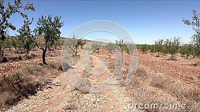 Camino rural entre Hueneja y Dolar almacen de video
