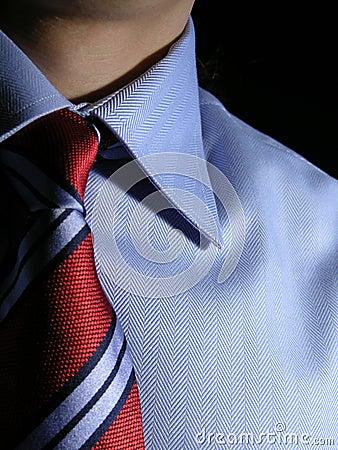Camisa y lazo