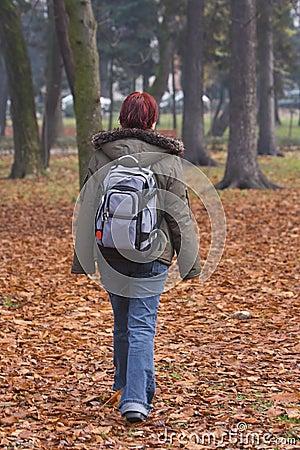 Camminata di autunno