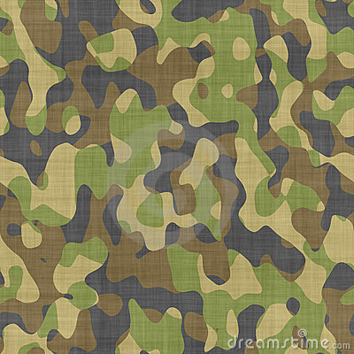Free Camoflage Texture Background Stock Photography - 4358262