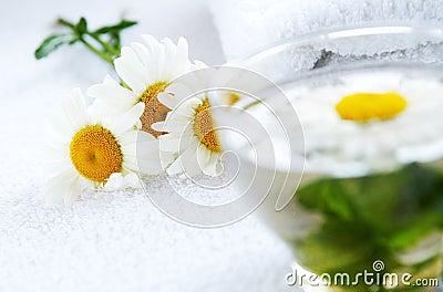 Camomile-mint herbal tea