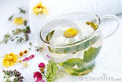 Camomile-mint medical tea