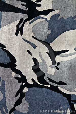 Free Camouflage Royalty Free Stock Photography - 19862087