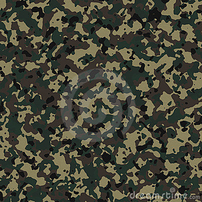 Free Camouflage Stock Images - 4553754