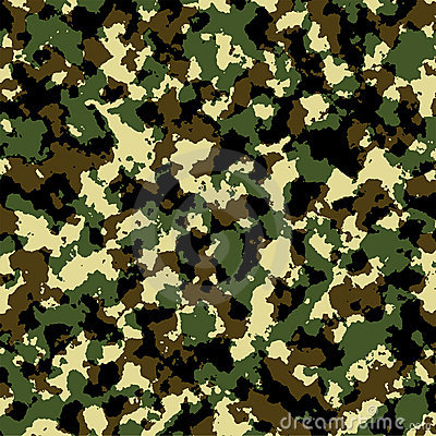 Free Camouflage Army Royalty Free Stock Image - 848446