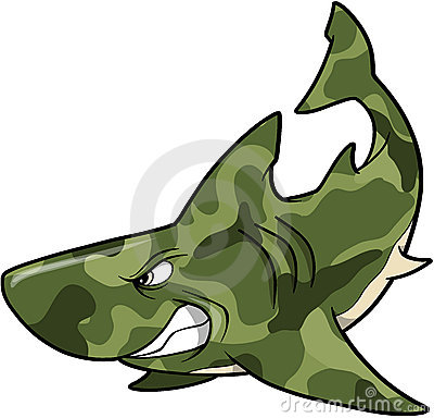 Camouflage Shark