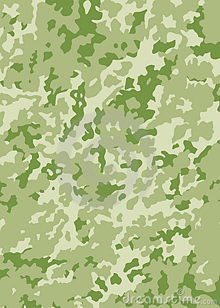 Free Camouflage Vector Pattern Stock Photography - 1208482
