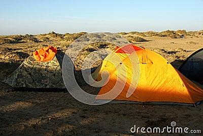 Camp in gobi desert