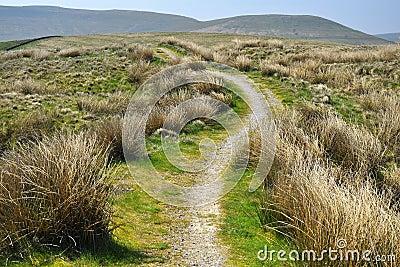 Campagna inglese: colline, erba, sentiero per pedoni, campo