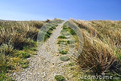 Campagne anglaise : sentier piéton, herbe, ciel bleu