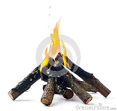 Free Campfire Royalty Free Stock Photos - 22687438