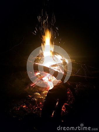 Free Campfire Stock Photography - 63823292