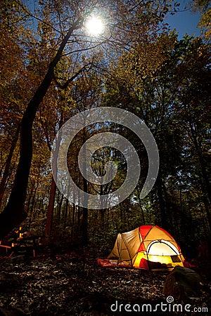 Free Camping At Night Stock Photography - 16656412