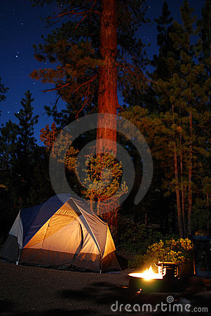 Free Camping In The Firs Stock Photography - 15360832