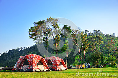 Camping with natural