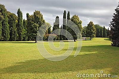 Campo amarilleado enorme en el parque Sigurta