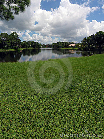 Campo de golf con opiniones del lago