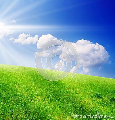 Campo de la hierba verde y del cielo nublado azul