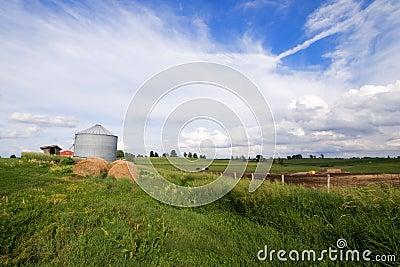 Campo dell Illinois con la balla di fieno e del silo