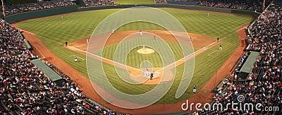 Campo di baseball