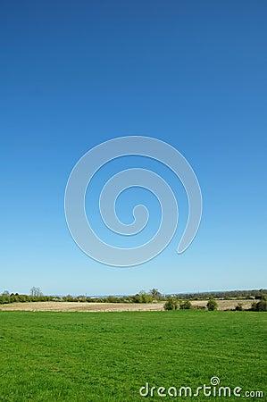 Campo e cielo blu verdi