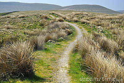 Campo inglês: monte, fuga, passeio, stroll