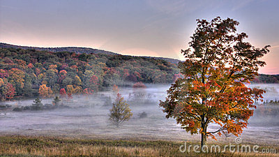 Canaan Valley Fall Scene